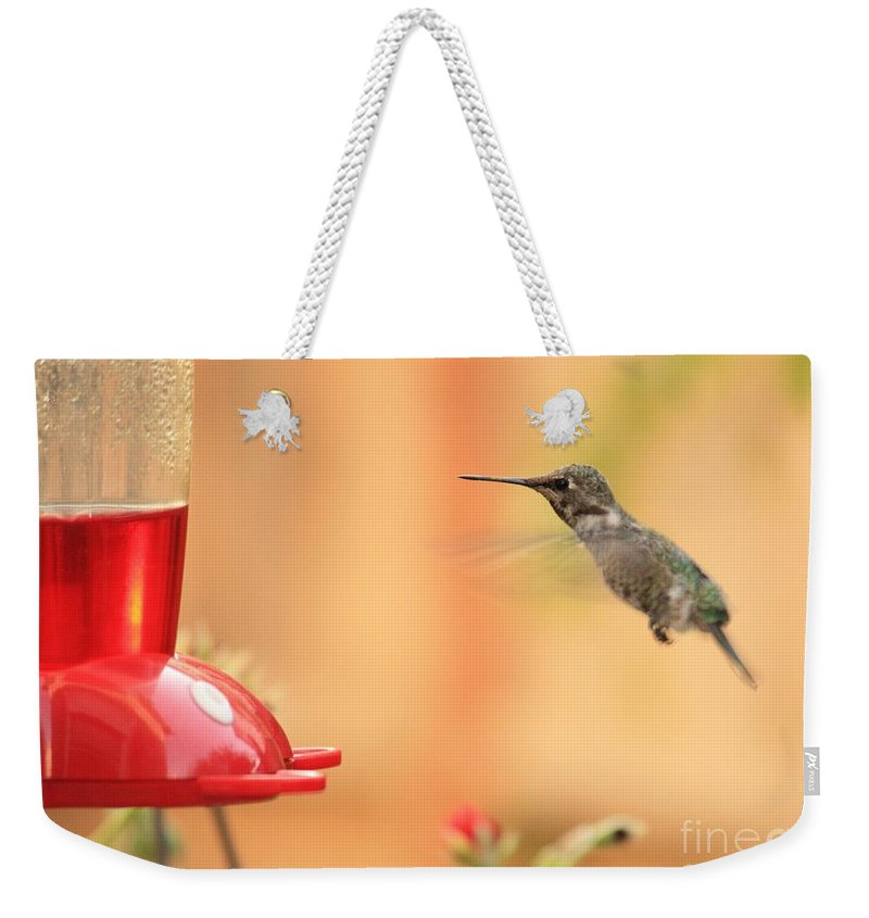 Hummingbird Weekender Tote Bag featuring the photograph Hummingbird And Feeder by Carol Groenen