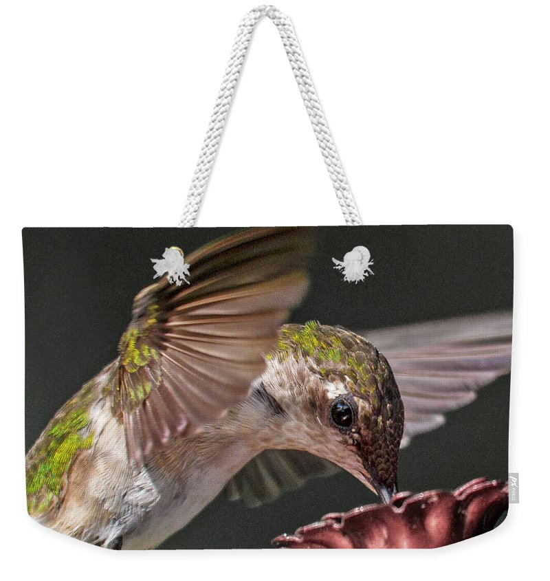 Hummingbird Weekender Tote Bag featuring the photograph Hummingbird. by Betsy Knapp