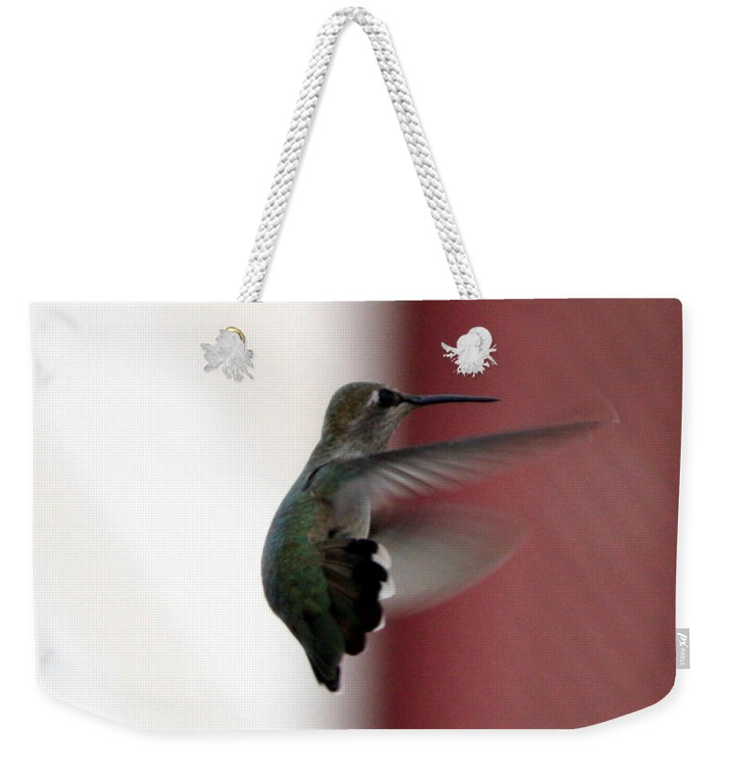 Hummingbird Weekender Tote Bag featuring the photograph Hummingbird Changing Course by Carol Groenen