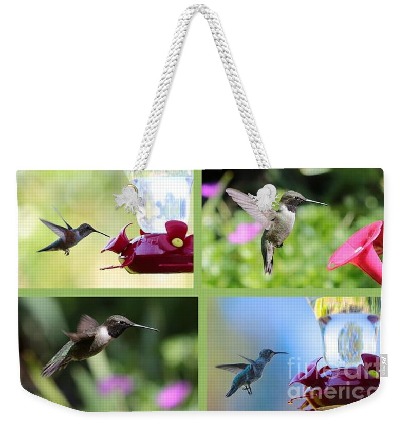 Hummingbird Weekender Tote Bag featuring the photograph Hummingbird Collage 2 by Carol Groenen