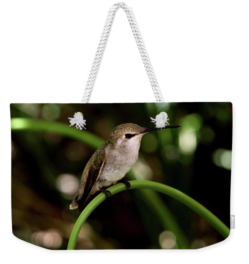 Hummingbird Weekender Tote Bag featuring the photograph Hummingbird by Heather Strong