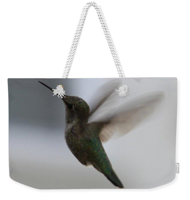 Hummingbird Weekender Tote Bag featuring the photograph Hummingbird In Flight by Carol Groenen
