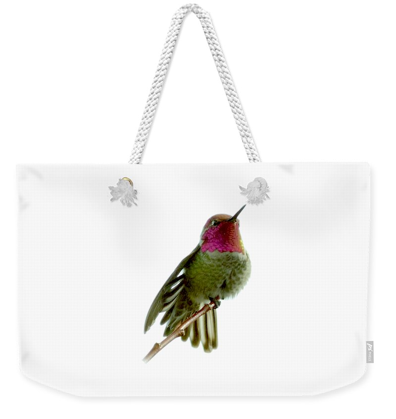 Patricia Sanders Weekender Tote Bag featuring the photograph Hummingbird Portrait T1 by Her Arts Desire