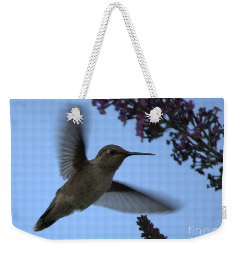 Hummingbird Weekender Tote Bag featuring the photograph Hummingbird Wings And Butterfly Bush by Carol Groenen