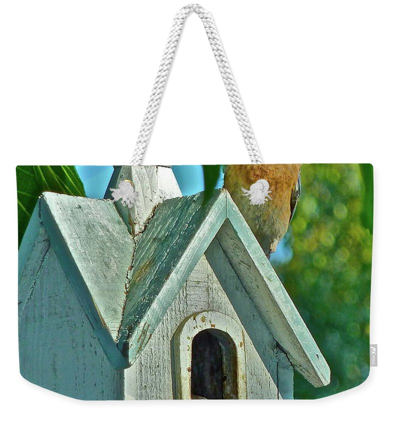 Birds Weekender Tote Bag featuring the photograph Hungry Baby by Diana Hatcher