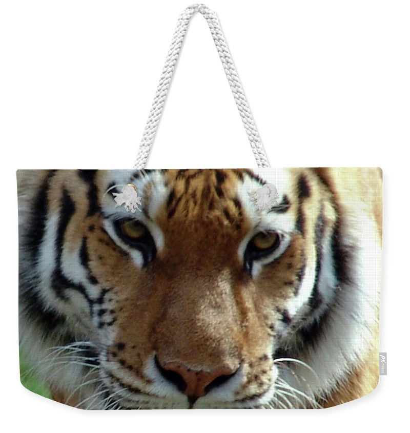 Tiger Weekender Tote Bag featuring the photograph Hungry Tiger by Di Designs