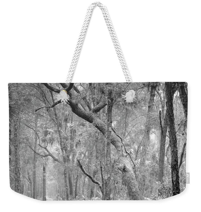 Canvas Weekender Tote Bag featuring the photograph Hunting Island Path by Phill Doherty