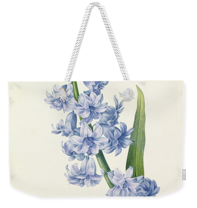 Hyacinthus Weekender Tote Bag featuring the drawing Hyacinth by Pierre Joseph Redoute