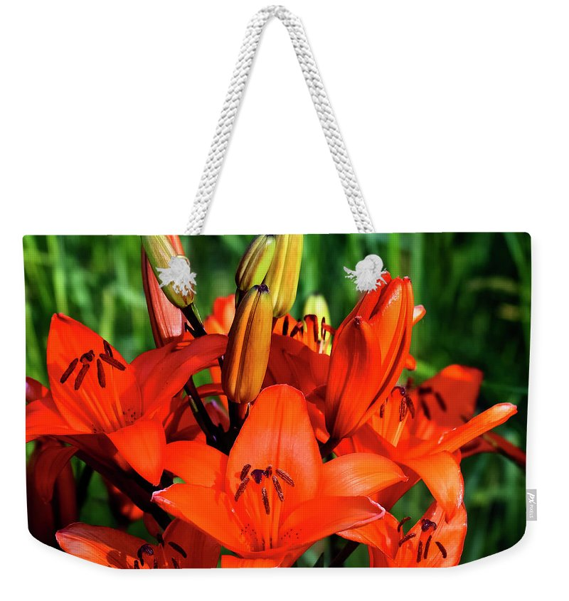 Lilies Weekender Tote Bag featuring the photograph Hybrid Lilies by Albert Seger