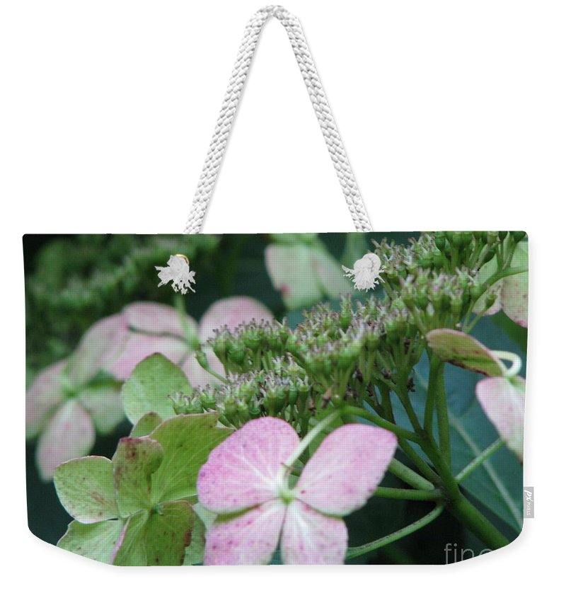 Hydrangea Weekender Tote Bag featuring the photograph Hydrangea by Amanda Barcon