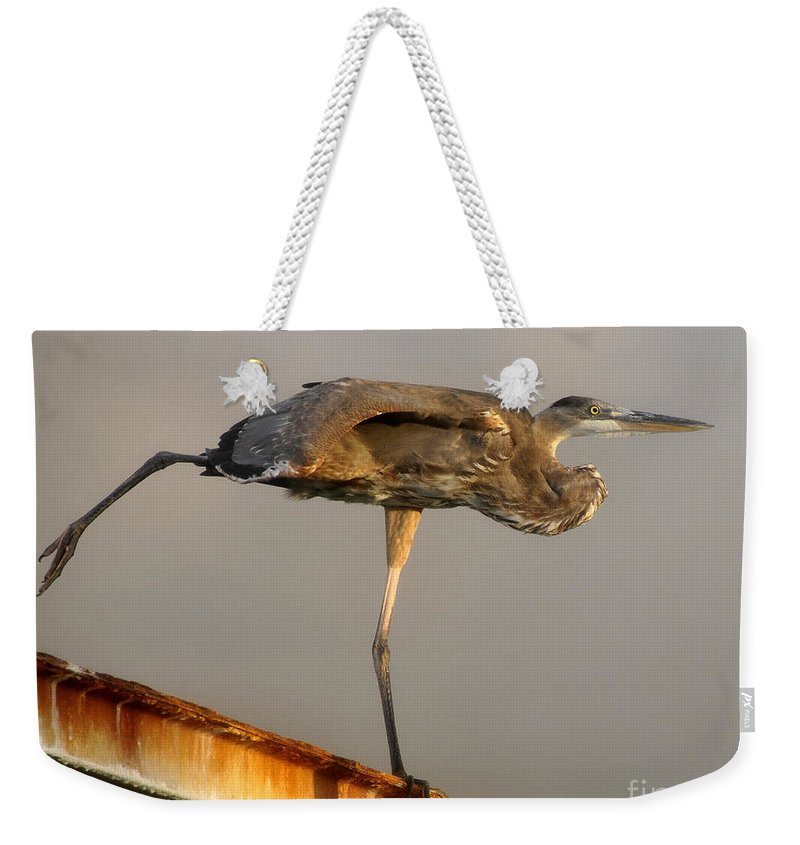Bird Weekender Tote Bag featuring the photograph I Am A Ballerina by David Lee Thompson