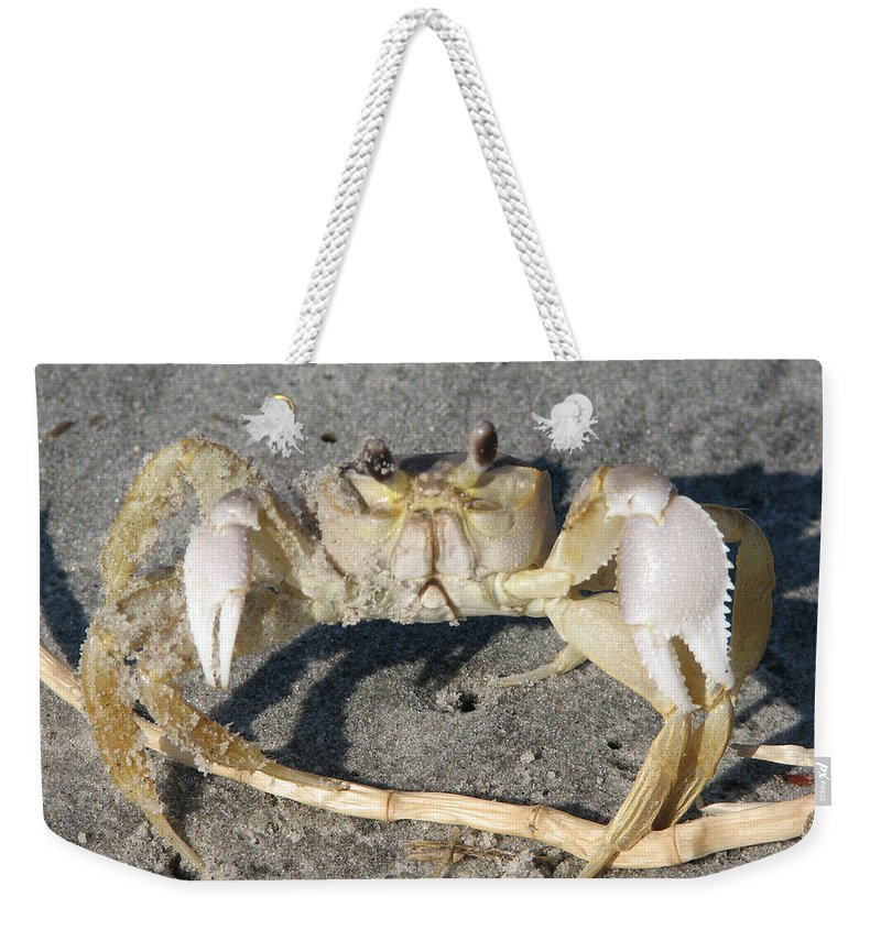 Crab Weekender Tote Bag featuring the photograph I Feel Crabby by Stacey May