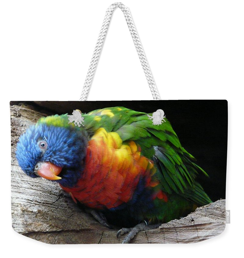 Bird Weekender Tote Bag featuring the photograph I Hear You by Valerie Ornstein
