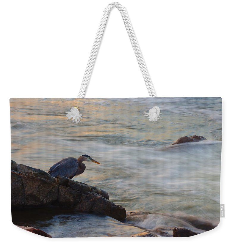 James Smullins Weekender Tote Bag featuring the photograph I Know Breakfast Is In There by James Smullins