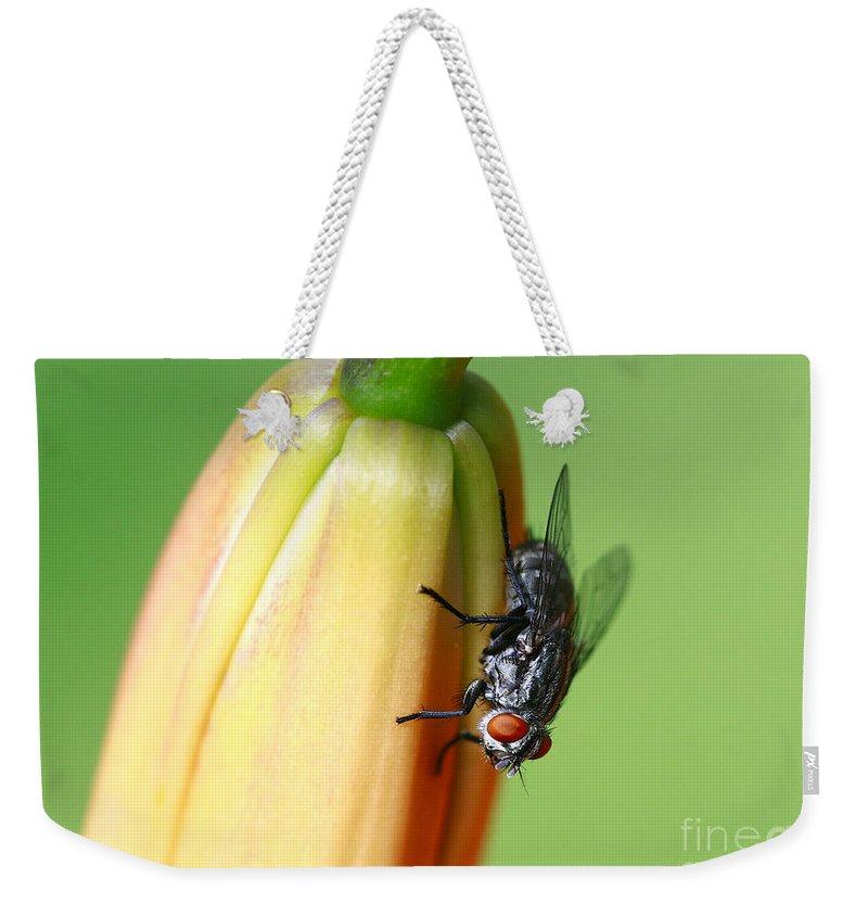 Macro. Fly Weekender Tote Bag featuring the photograph I Like Flowers by Deborah Benoit