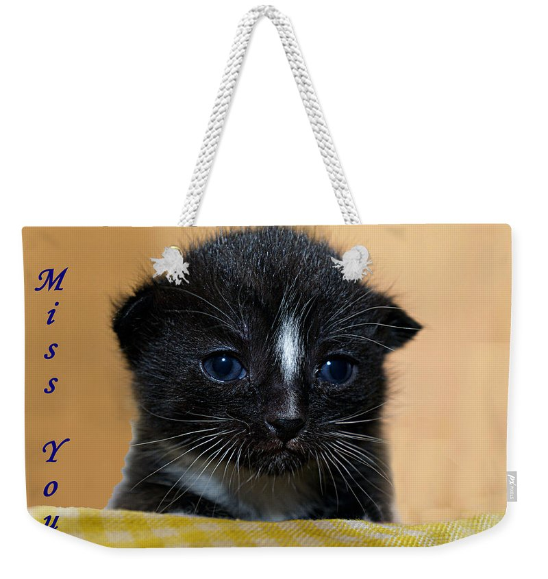 Greeting Card Weekender Tote Bag featuring the photograph I Miss You Kitty by Bob Johnson