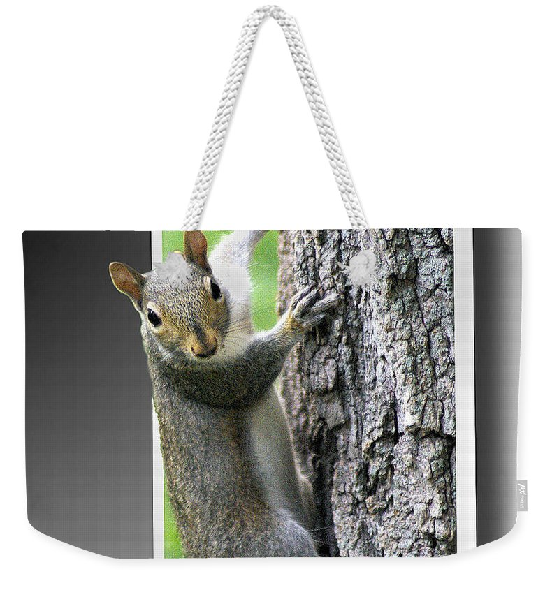 2d Weekender Tote Bag featuring the photograph I See You by Brian Wallace