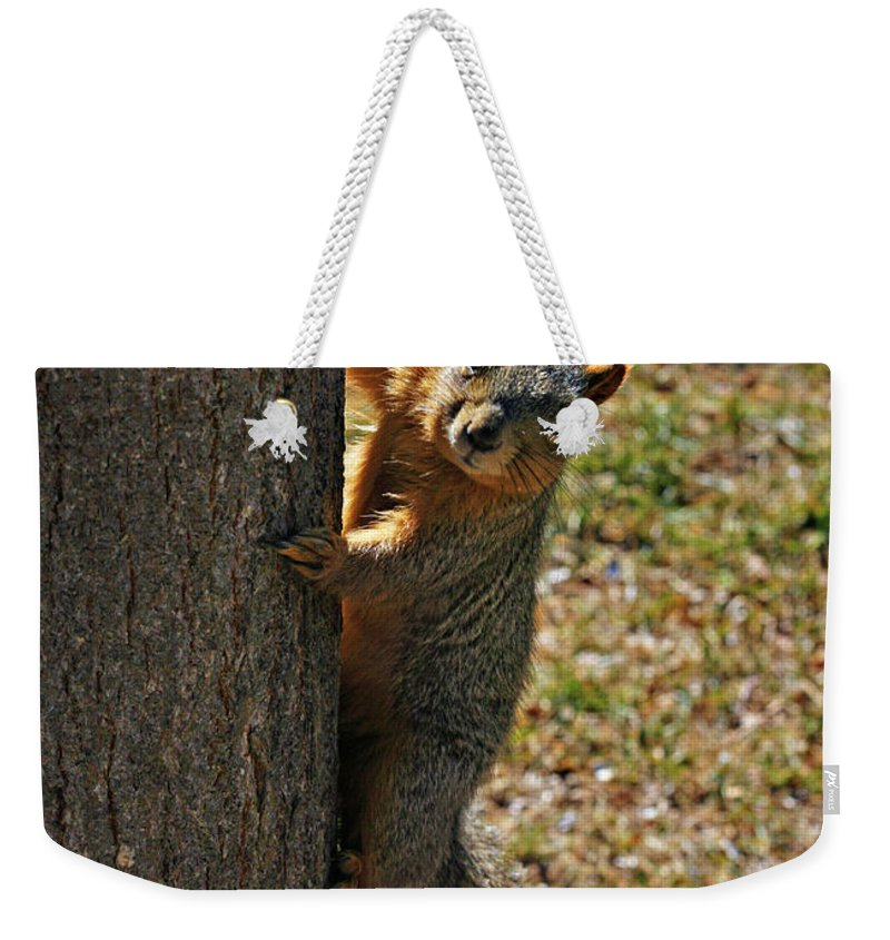 Squirrel Weekender Tote Bag featuring the photograph I See You by Marilyn Hunt
