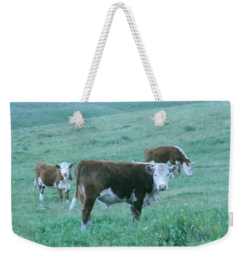 Agriculture Weekender Tote Bag featuring the photograph I See You by Mary Mikawoz