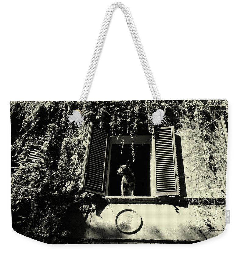 Weekender Tote Bag featuring the pyrography I Shot #9 by Marcello Di Donato