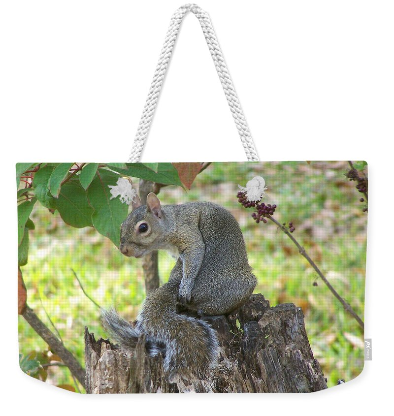 Nature Weekender Tote Bag featuring the photograph I Should Have Used... by Peg Urban