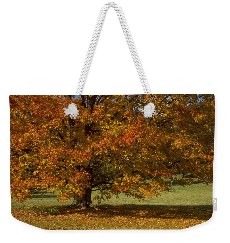 Fall Weekender Tote Bag featuring the photograph I Will Be Back by John Absher