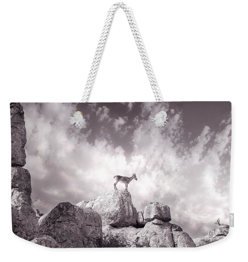 Ibex Weekender Tote Bag featuring the photograph Ibex -the Wild Mountain Goats In The El Torcal Mountains Spain by Mal Bray