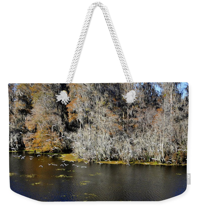 White Ibis Weekender Tote Bag featuring the photograph Ibis In Flight by David Lee Thompson