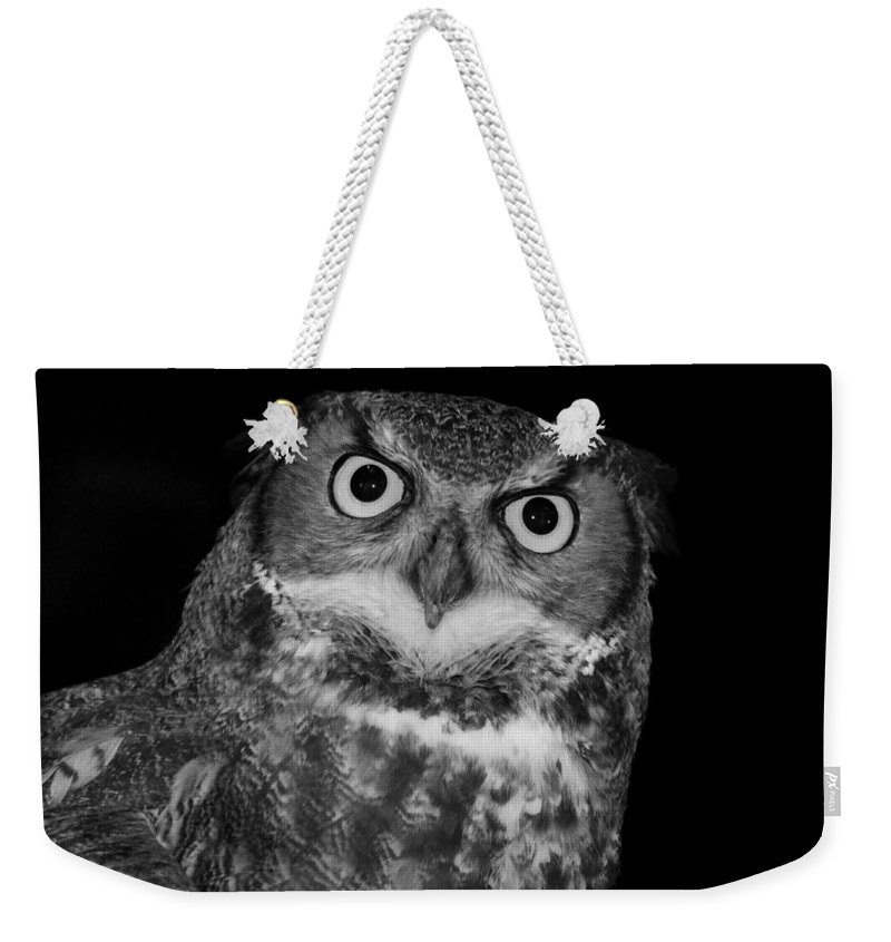 Owl Weekender Tote Bag featuring the photograph Icarus by Michiale Schneider