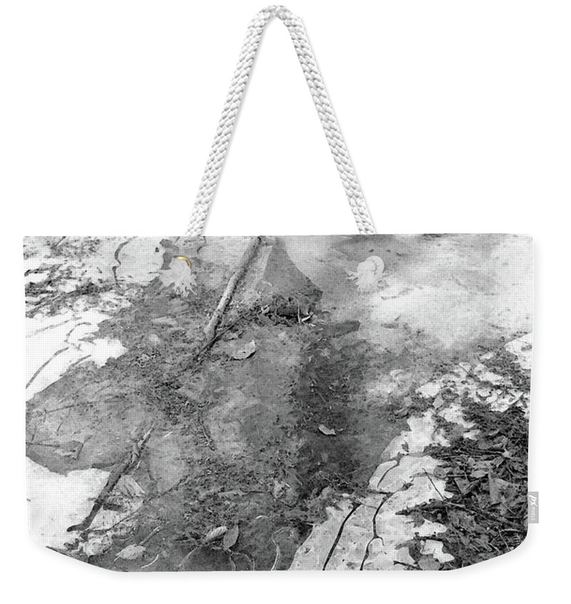 Abstract Weekender Tote Bag featuring the photograph Ice In The Forest by Lyle Crump