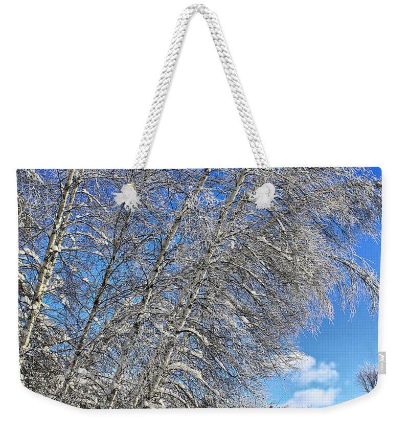 Snow Weekender Tote Bag featuring the photograph Ice Laden Birches by Deborah Benoit