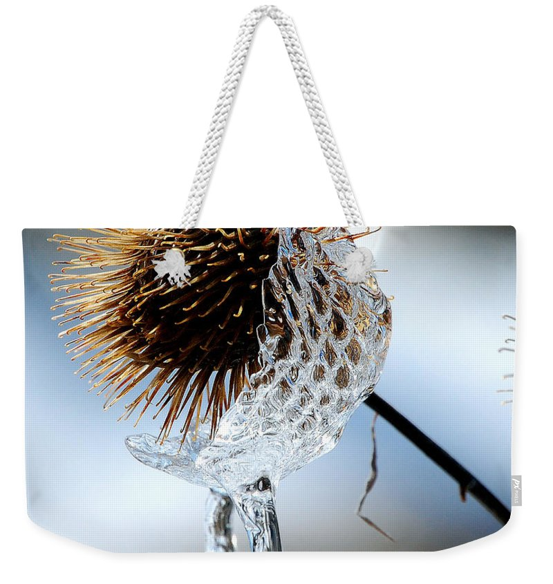 Nature Weekender Tote Bag featuring the photograph Ice On Burdox by Lisa Kane