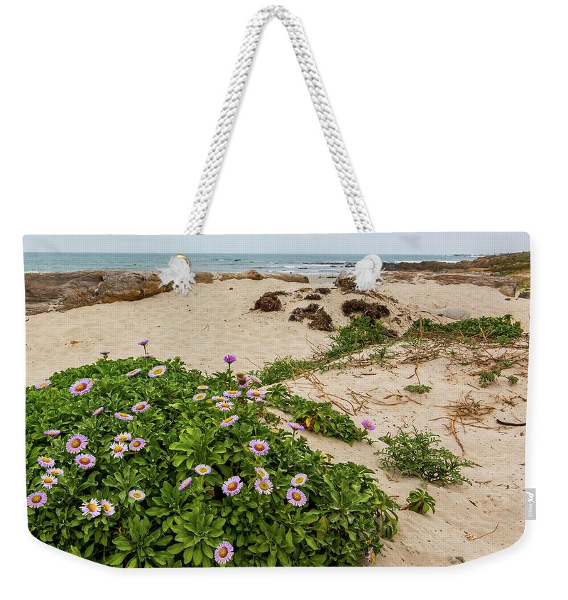 Ice Plant Weekender Tote Bag featuring the photograph Ice Plant Booms On Pebble Beach by Patti Deters