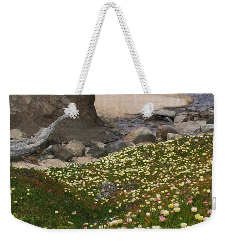 Landscape Weekender Tote Bag featuring the photograph Ice Plants On Moss Beach by Karen W Meyer