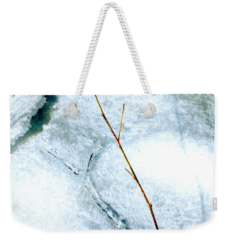 Nature Weekender Tote Bag featuring the photograph Ice Shadow by Lisa Kane