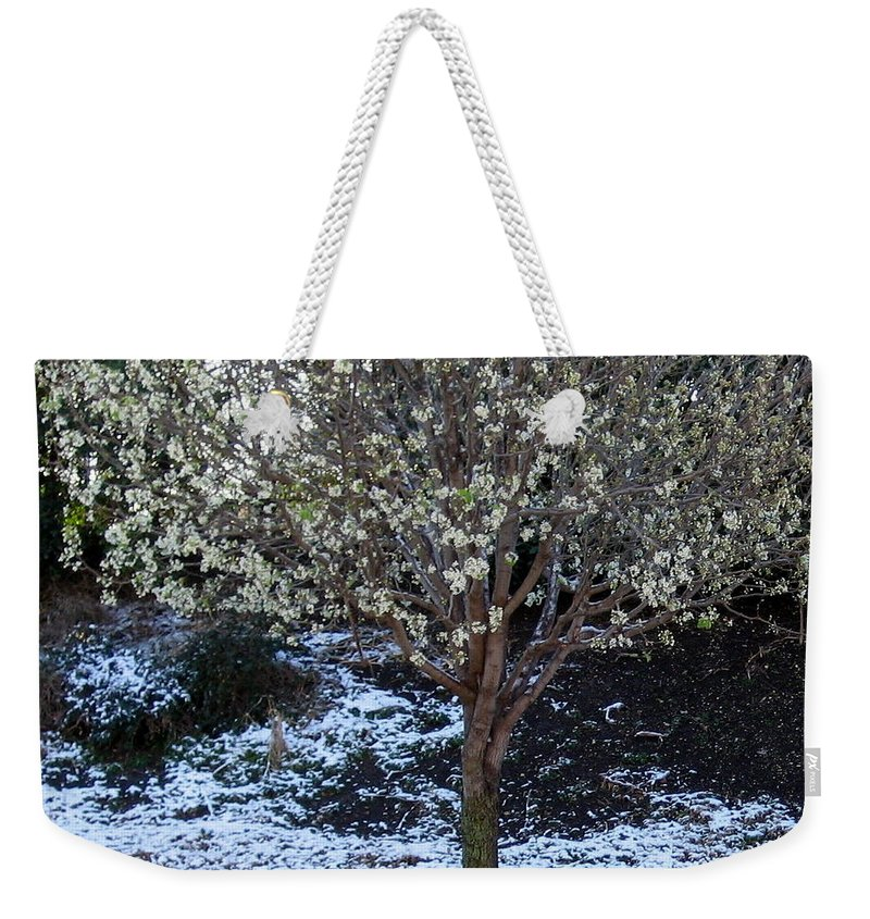 Snow Weekender Tote Bag featuring the photograph Ice Tree by Amy Hosp