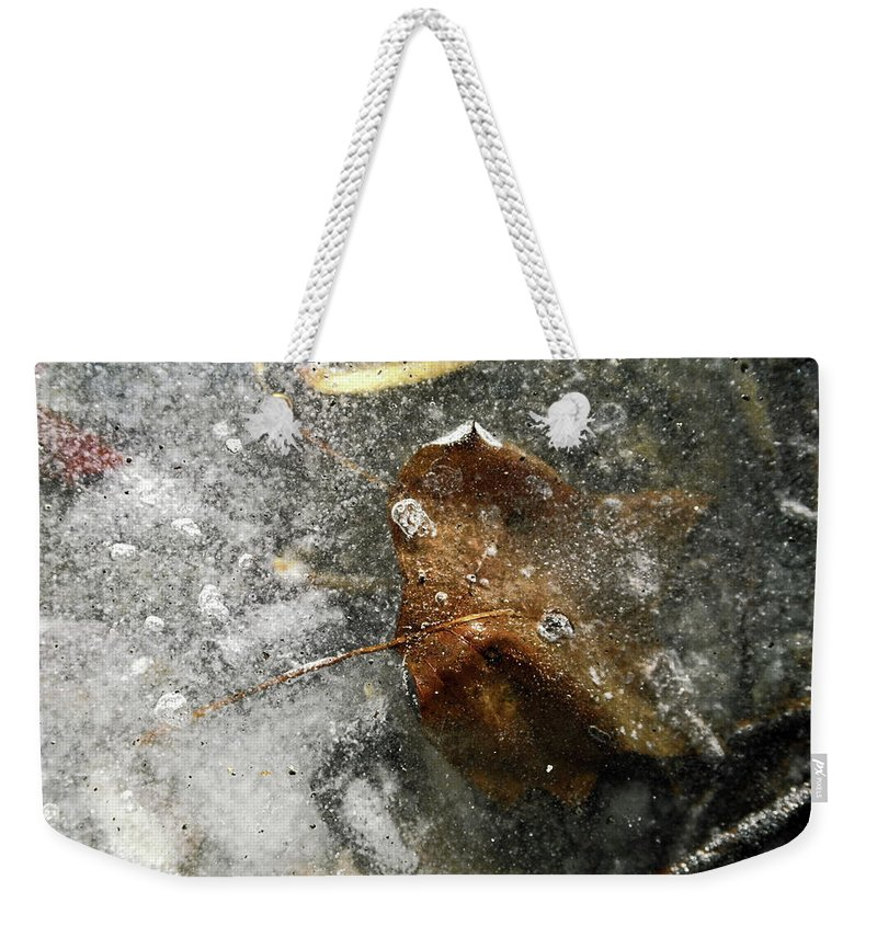 Leaf Encased In Ice Weekender Tote Bag featuring the photograph Iced Leaf by Sally Weigand