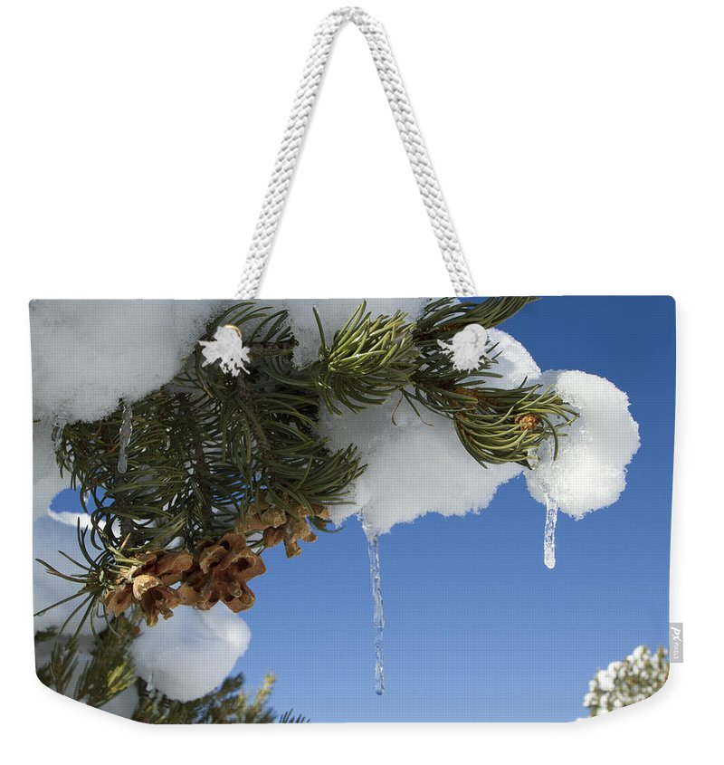 Colorado Weekender Tote Bag featuring the photograph Icicles On Pine Tree by Sandy Swanson