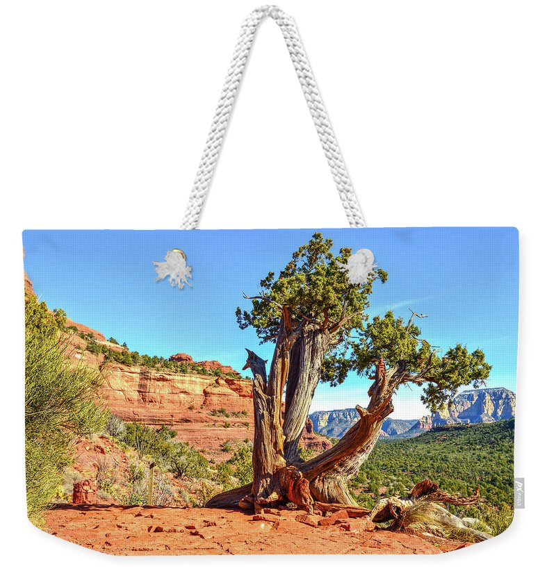 Southwest Weekender Tote Bag featuring the photograph Iconic Southwest by Mauverneen Blevins