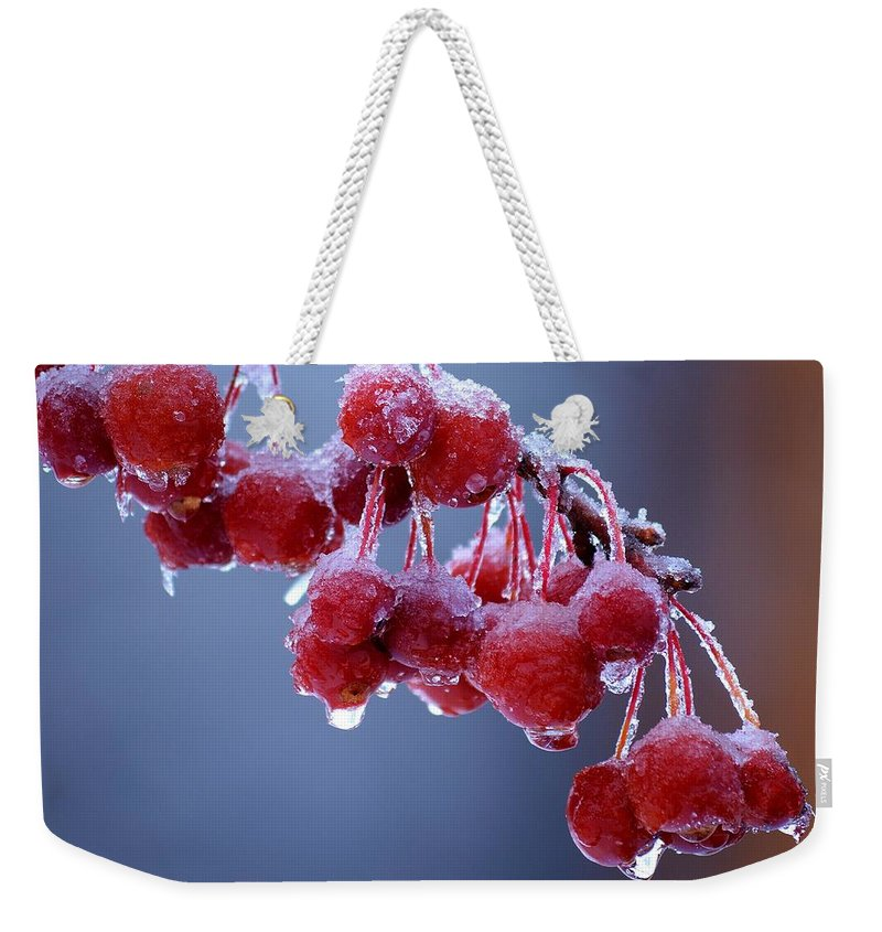 Winter Weekender Tote Bag featuring the photograph Icy Berries by Lisa Kane