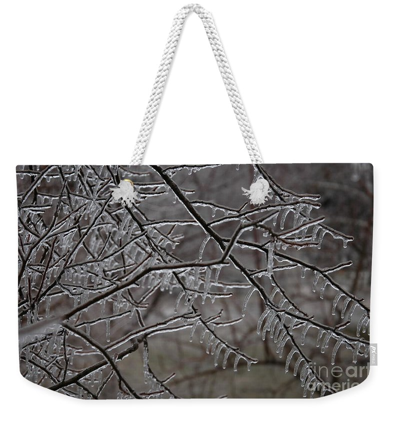 Ice Weekender Tote Bag featuring the photograph Icy Branches by Kathy Carlson