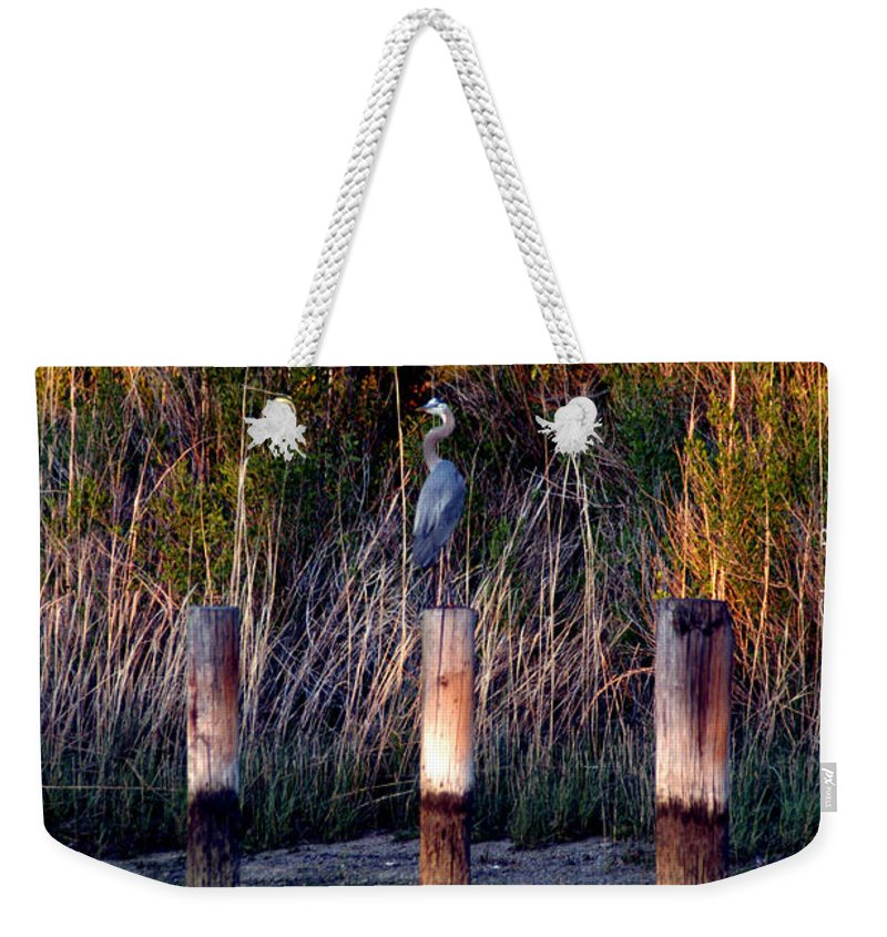 Clay Weekender Tote Bag featuring the photograph Illusion by Clayton Bruster