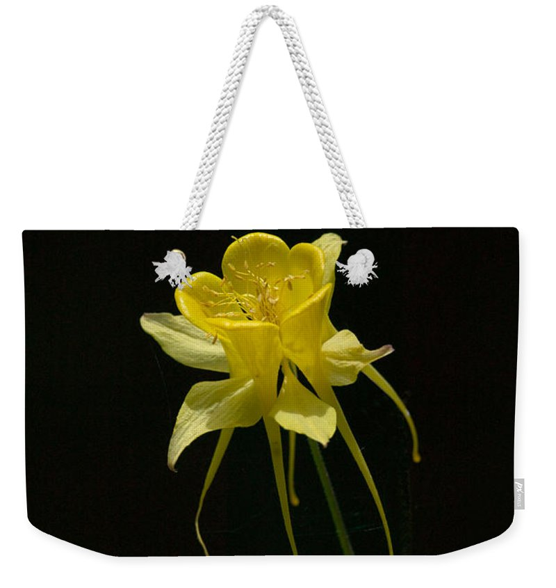 Floral Weekender Tote Bag featuring the photograph Ilumination by Randall Ingalls