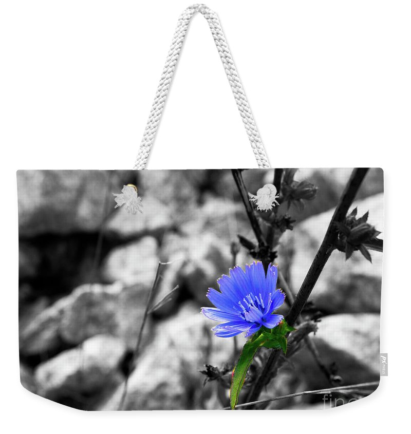 Flower Art Weekender Tote Bag featuring the photograph I'm Blue by Gary Andre