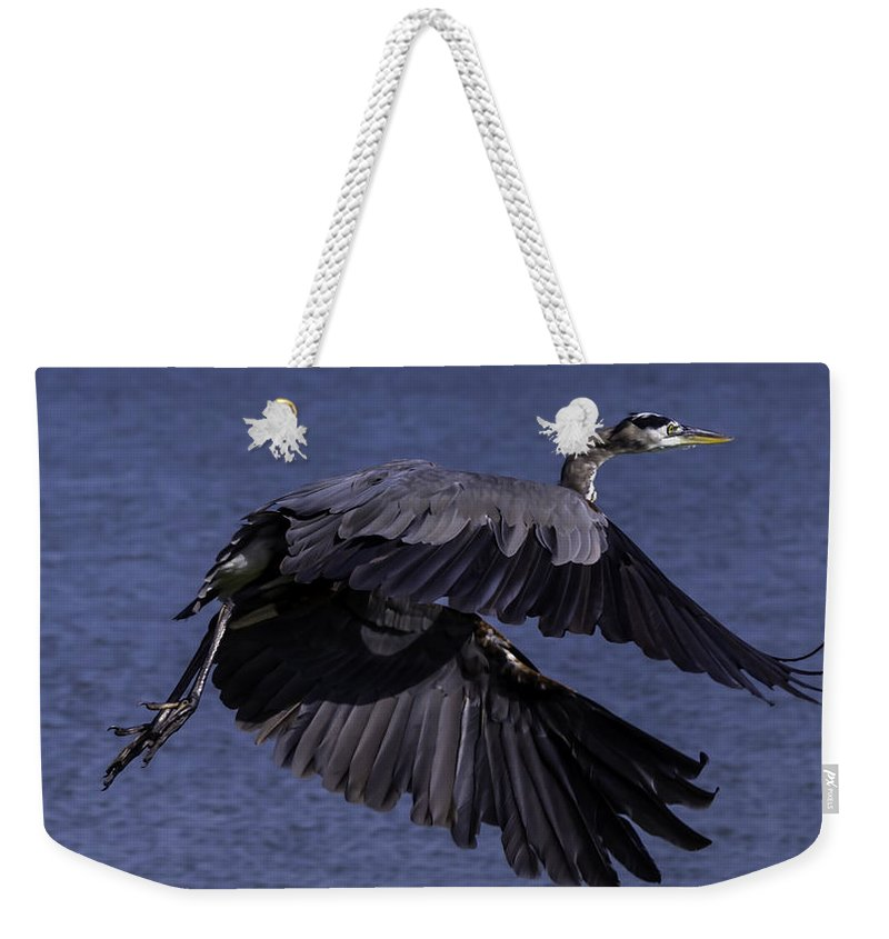 Bird Weekender Tote Bag featuring the photograph I'm Outta Here by Leticia Latocki