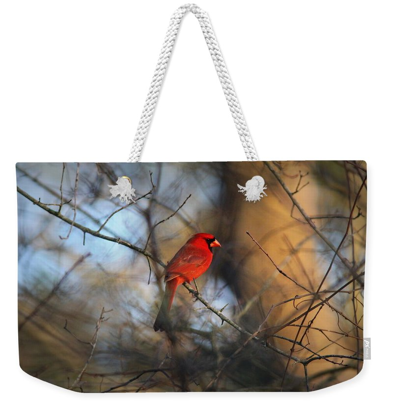 Northern Cardinal Weekender Tote Bag featuring the photograph Img_2866-001 - Northern Cardinal by Travis Truelove