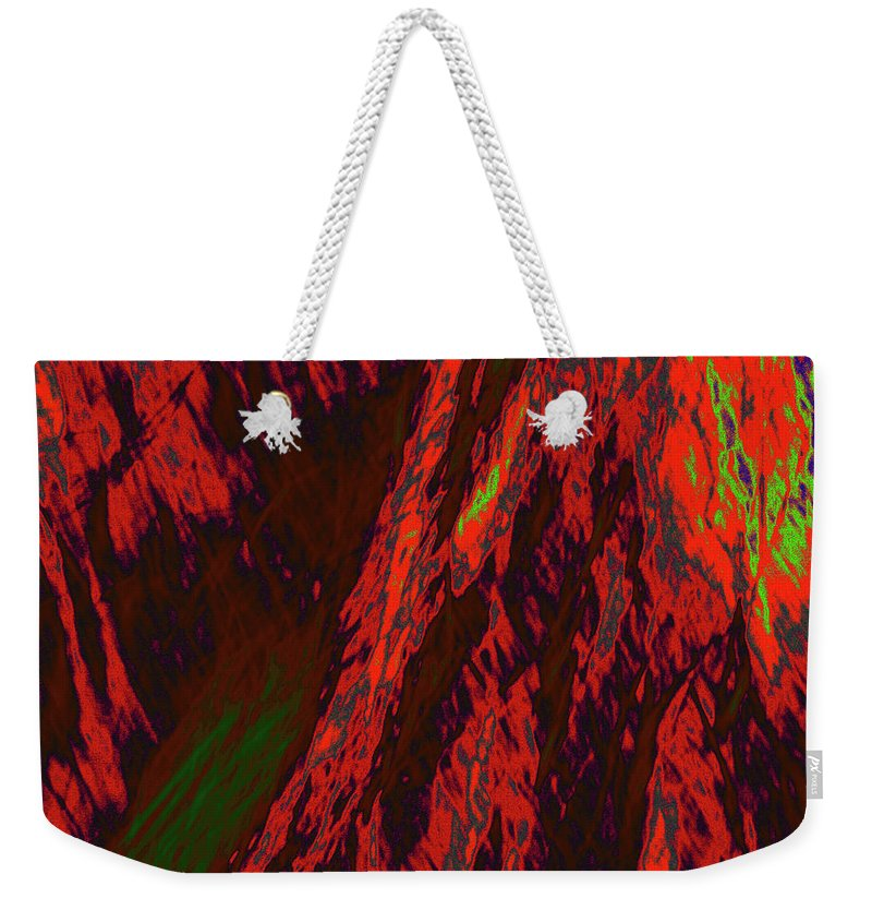 Forest Weekender Tote Bag featuring the photograph Impressions Of A Burning Forest 10 by Gary Bartoloni