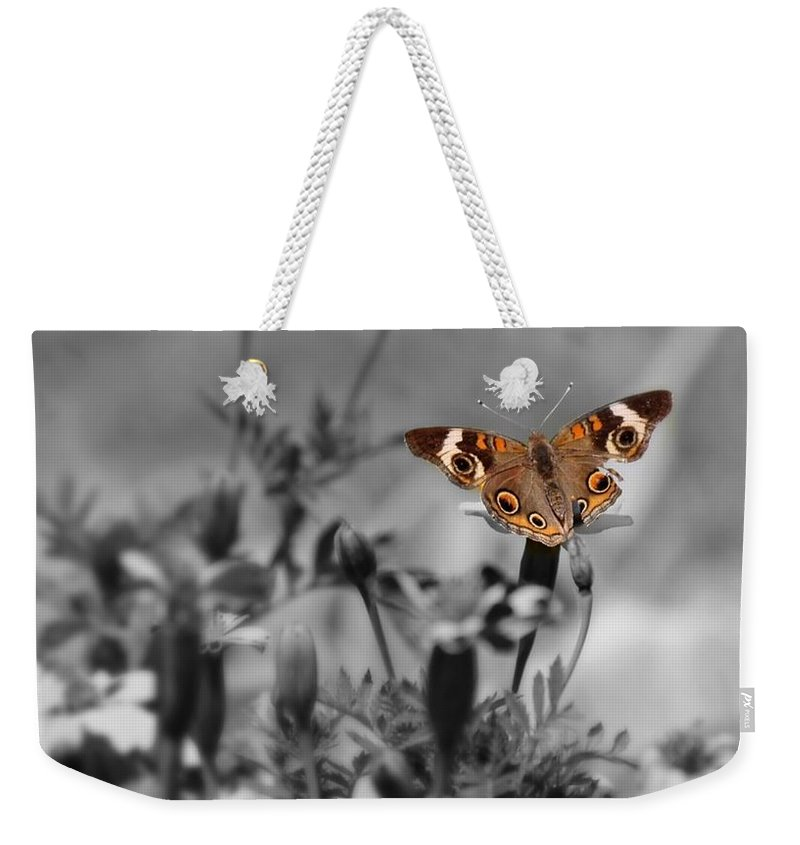 Butterfly Weekender Tote Bag featuring the photograph In A World Of Darkness by Teresa Self