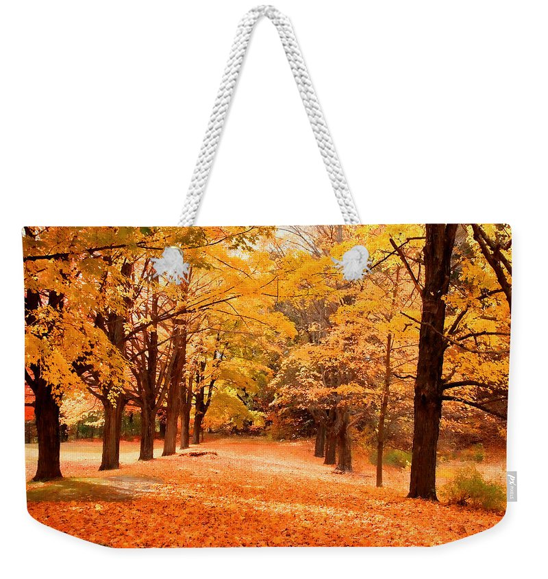 Nature Weekender Tote Bag featuring the photograph In Autumn by Mike Smale