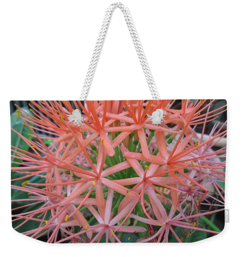 Flower Weekender Tote Bag featuring the photograph In Bloom by Ana-Maria CIRJAN